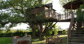 Outdoor eating area with enclosed tree house